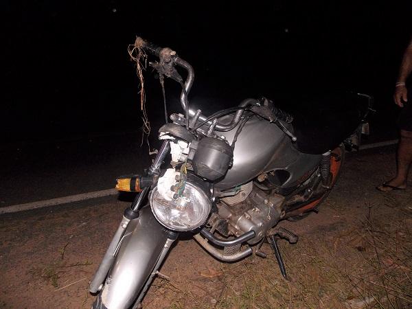Jovem fica ferido ao bater motocicleta em jumento na rodovia que liga Água Branca a Hugo Napoleão