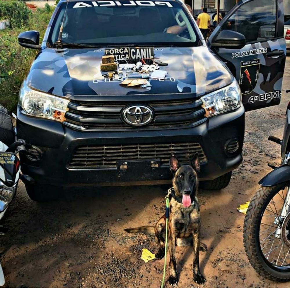 Polícia Militar apreende drogas, celulares e motocicletas na zona rural de Picos