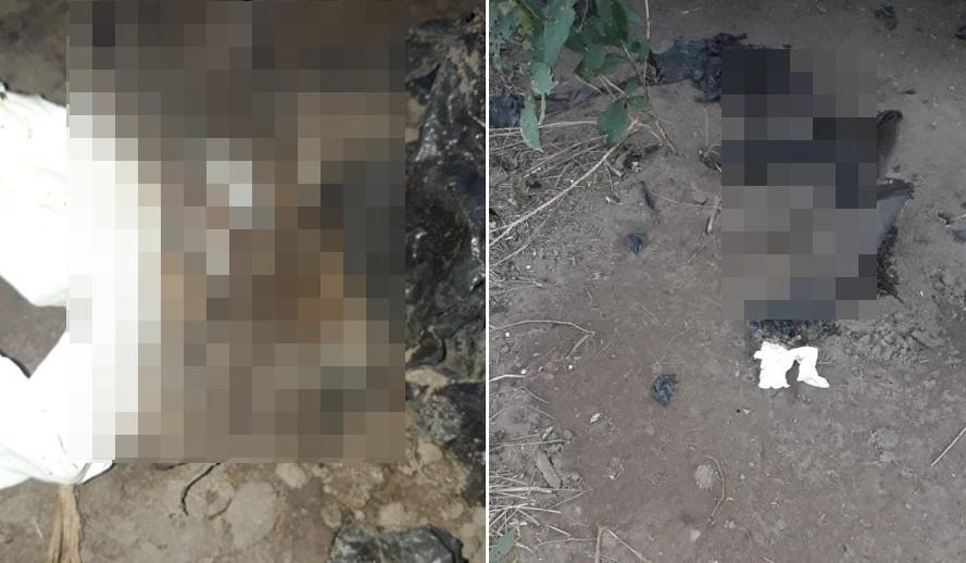 Ossada encontrada próximo ao aterro sanitário em Água Branca não é de um ser humano, diz Polícia Civil