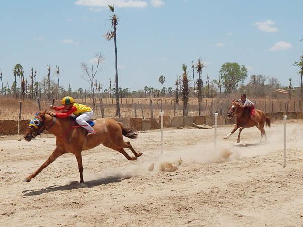 Em Hugo Napoleão, tradicional corrida de cavalos terá 6 mil reais em premiação