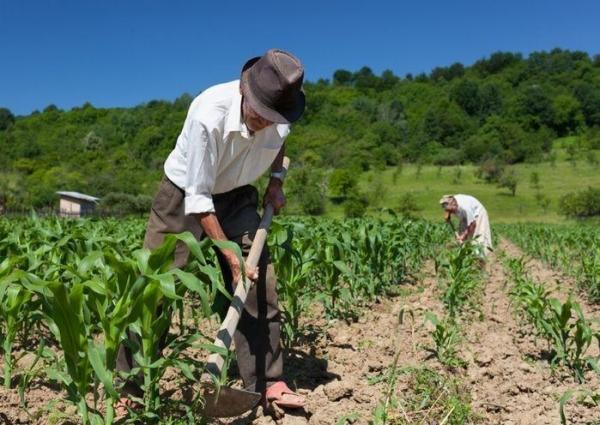 45 mil agricultores do Piauí poderão renegociar dívidas rurais em 2018