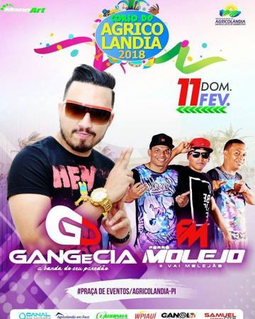 Carnaval 2018, dia 11 de fevereiro com Gang e CIA e Forró Molejo em Agricolândia
