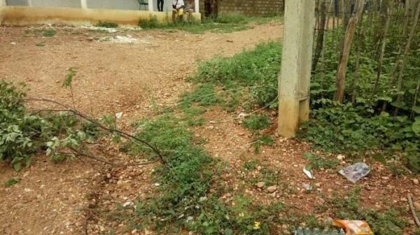 Criança de 5 anos morre ao tocar em fio da rede de alta tensão no sul do Piauí