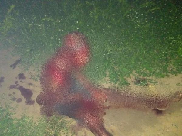 PI: Homem que foi esfaqueado pela esposa morre no hospital