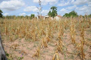 Governo Federal reconhece 33 municípios em situação de emergência