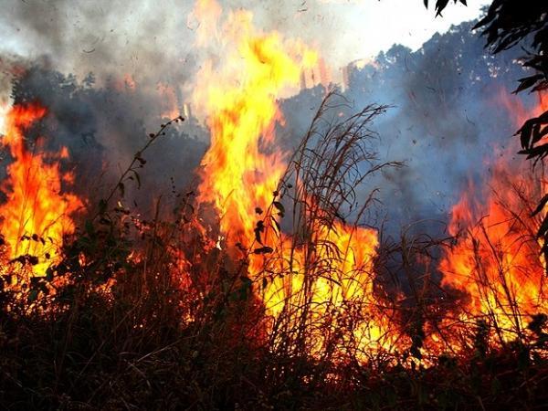 Ministério Público lança o projeto Corta-Fogo para prevenção de queimadas no Piauí