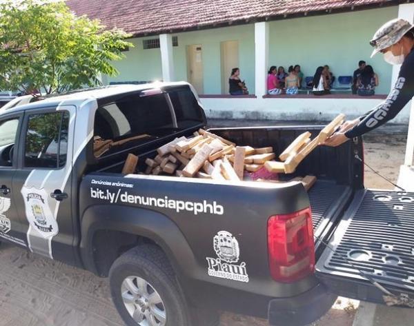 Polícia Civil incinera mais de 350 kg de drogas em Parnaíba