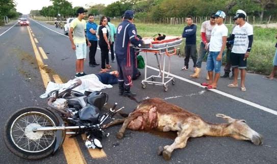 Com o impacto, o animal não resistiu e morreu no local. Já a frente da moto ficou totalmente destruída