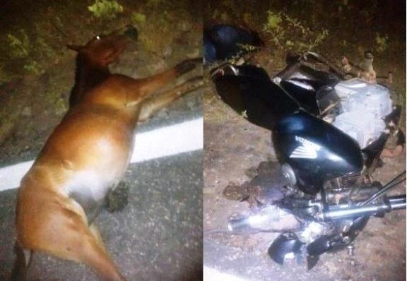 Piauí | Mulher morre em grave acidente ao retornar de festa