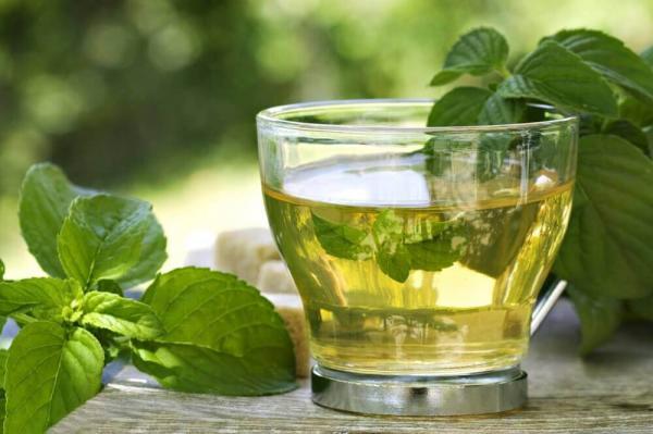 Chá de menta, um dos melhores aliados da dieta