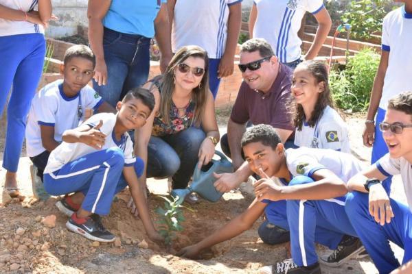 Plantio de mudas marca Dia da Árvore em Floriano