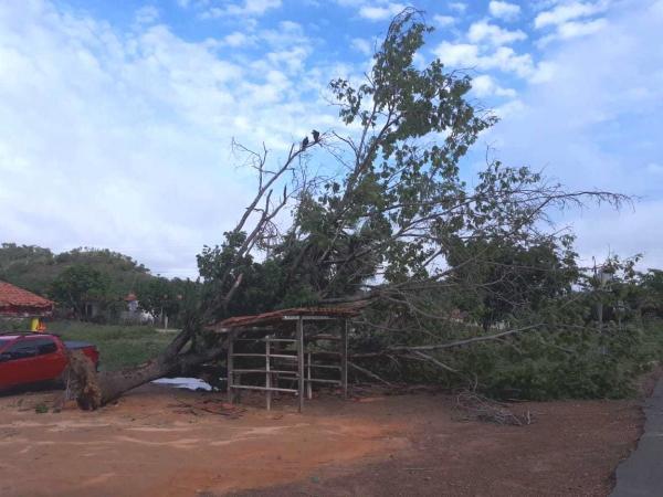 Fortes chuvas causam estragos e prejuízos em Monsenhor Gil
