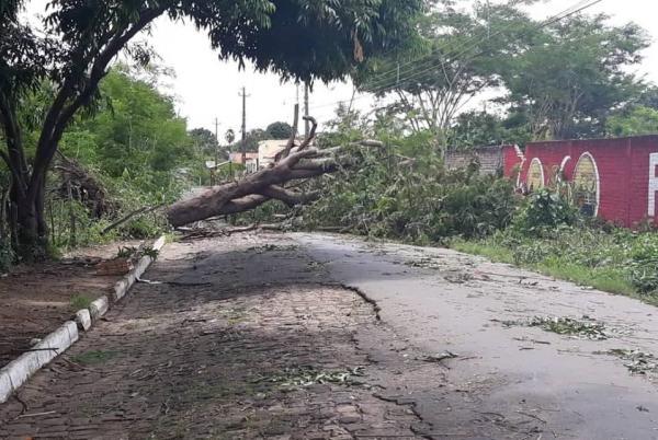 Temporal com chuva e ventos fortes causa estragos e assusta moradores em Angical do Piauí