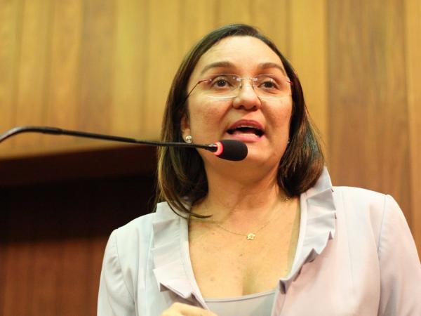 Flora Izabel anuncia projeto de incentivo fiscal ao turismo do Piauí e pede apoio para aprovação