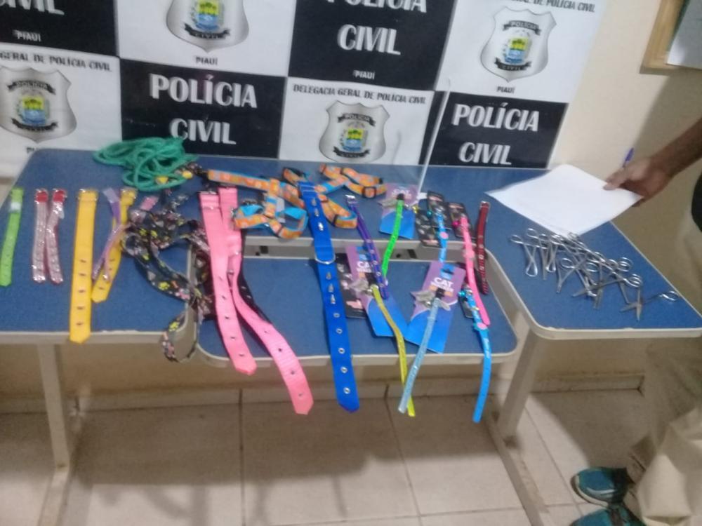Itens furtados no Pet Shop em Picos