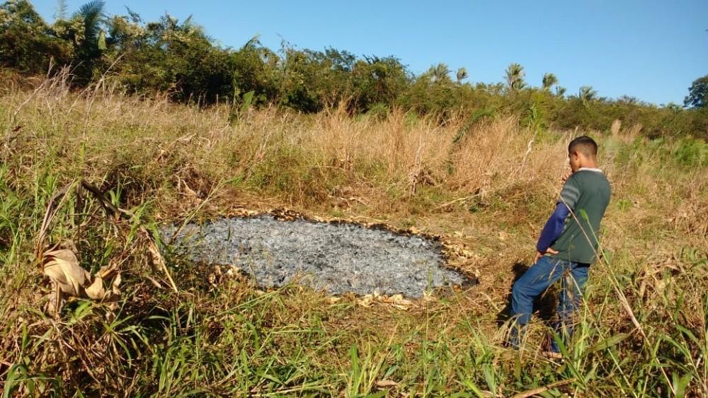 Lavrador tem colheita de milho queimada por incêndio criminoso na zona rural de São Pedro do Piauí