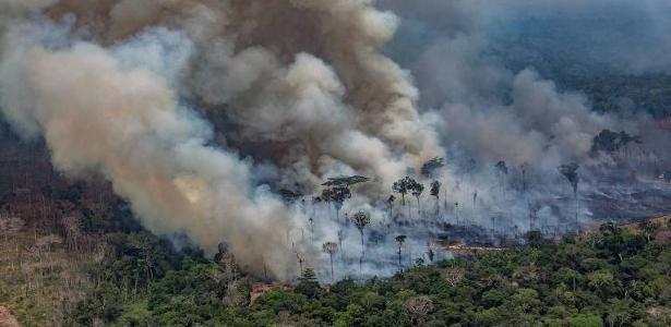 Decisões da gestão Bolsonaro fragilizaram controle ambiental no país